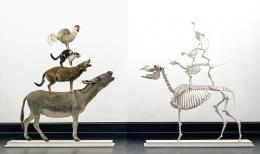 Maurizio Cattelan: Love Saves Life, 1995 und Love Lasts Forever, 1998. Tierpräparate, Tierskelette; Kunsthalle Bremen – Der Kunstverein in Bremen, © Maurizio Cattelan