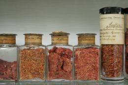 """Pharmaziehistorische Sammlung """"Dittrichiana"""" Bild: Institut für Pharmazie der Universität Innsbruck"""