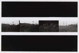 Aschefriedhof des Konzentrationslagers Mauthausen, 1968 / Burial ground for ashes, Mauthausen concentration camp, 1968 s/w Fotografie / b/w photo Photo © mumok Museum moderner Kunst Stiftung Ludwig Wien, Schenkung / donation from Michael Merighi