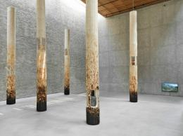 Claudia Comte, When Dinosaurs Ruled the Earth, Ausstellungsansicht König Galerie, Berlin, 2018 © Foto: Roman März