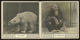 """""""Der Eisbär"""" und """"Der Schimpanse"""", Österreichische Staatsdruckerei"""