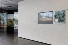 """""""AWOL"""", 2019,  Foto: Universalmuseum Joanneum/N. Lackner"""