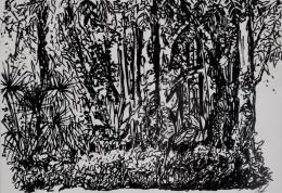 Martina Feichtinger: Jardim Botanico (Tusche auf Papier)