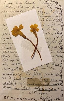 """""""With Love, Ludwig"""": Brief aus der Korrespondenz mit Ben Richards © Österreichische Nationalbibliothek"""