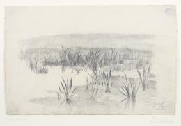 Lovis Corinth, Der Teich, 1886 Graphitstift auf Maschinenbüttenpapier, 30,4 x 47/47,5 cm Kunsthaus Zürich