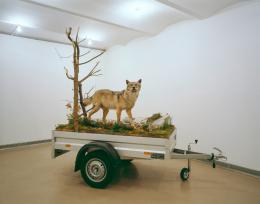 Dion Mark Mobile Wilderness Unit - Wolf, 2006 diverse Materialien, 274 x 148 x 294 cm Höhe, Breite, Tiefe Galerie Georg Kargl, Wien