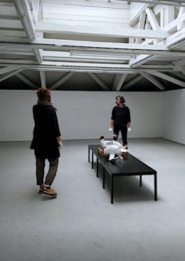 Einrichtung der Möwen-Installation von May-Britt Nyberg Chromy (© Künstlerhaus)