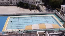 Sebastian Stadler, Swimming Pool, 2019 (Video Still), Courtesy the artist