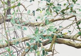 Toba Khedoori, Ohne Titel, 2017 (Detail). Öl auf Leinwand, 146.7 x 220.3 cm; Privatsammlung, Boston. © Toba Khedoori; Courtesy Regen Projects, Los Angeles und David Zwirner