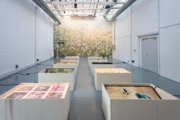 """Uriel Orlow, """"Soil Affinities"""", 2018, Installation aus verschiedenen Medien © Uriel Orlow"""
